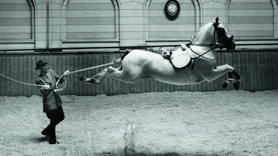 Десять фотографов. Швеция. 1958–2008