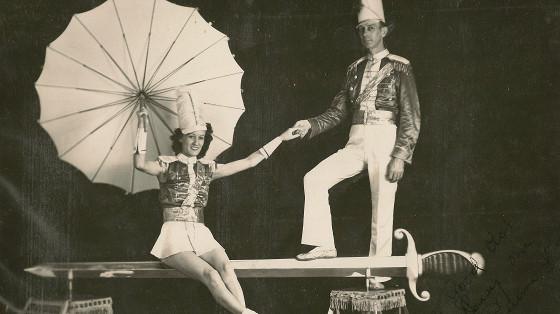 Загадочный мир цирковой