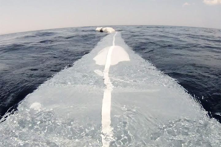 Миллениал готовится спасать океан