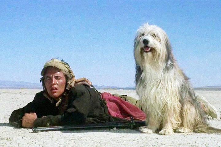 Кадр из «Парня и его собаки»