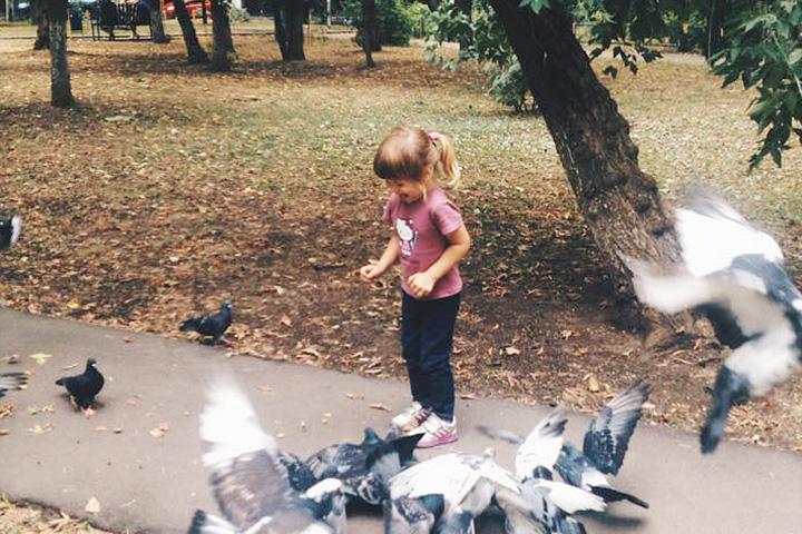 Постоянная подопечная Насти, Мария-Ариадна, которую все зовут просто Масей, кормит голубей