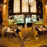 Ресторан Moon Deer - фотография 6