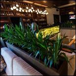 Ресторан Barberry - фотография 2