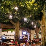 Ресторан Волшебный сад - фотография 1