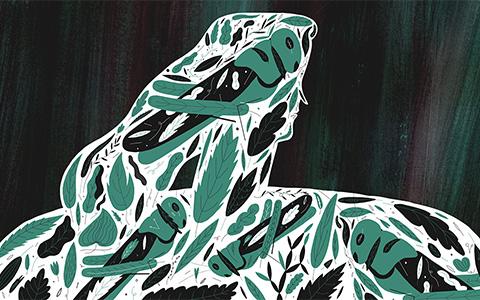 «Виролюция» Райана Фрэнка