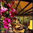 Ресторан Vietcafé - фотография 8