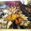 100 чудес света. Из золотой коллекции National Geographic. USA