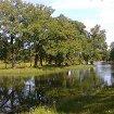 Колонистский и Луговой парки