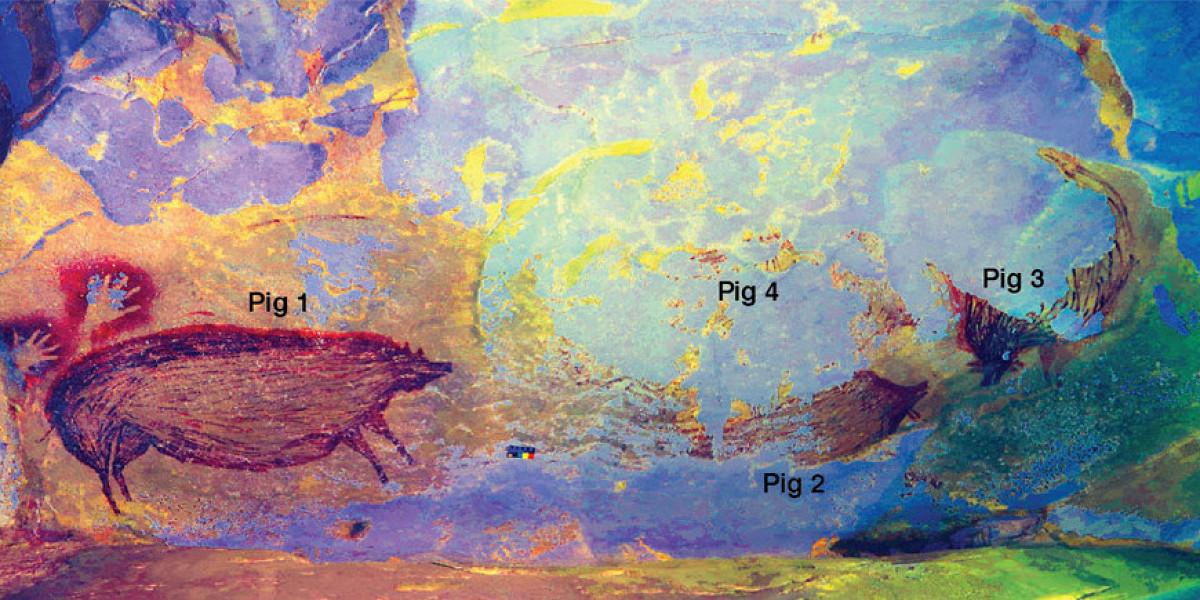 В Индонезии нашли самый древний наскальный рисунок животного