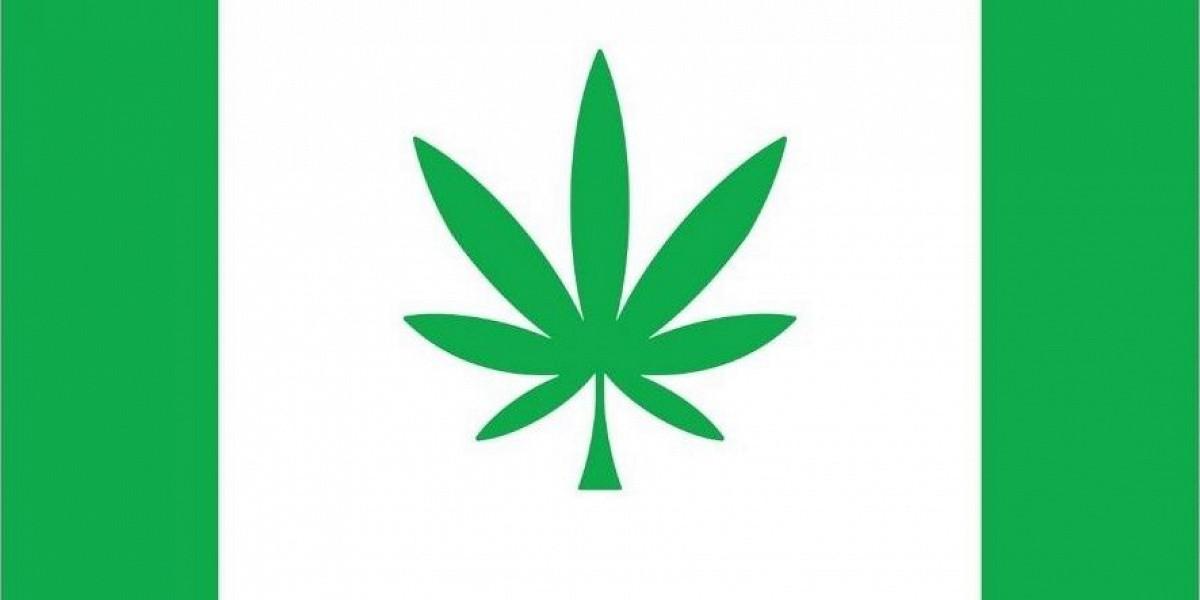 Клип песни про коноплю что сделать чтобы тест не показал марихуану