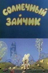 Постер Солнечный зайчик