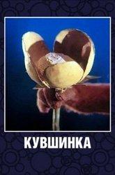 Постер Кувшинка