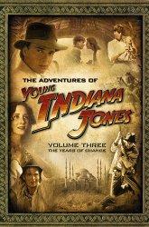 Постер Приключения молодого Индианы Джонса: Скандал 1920-го