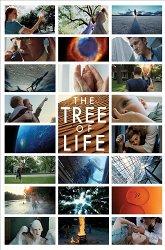 Постер Древо жизни