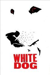 Постер Белая собака