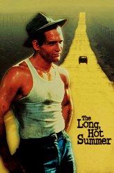 Постер Долгое жаркое лето