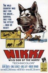 Постер Никки, дикая собака Севера