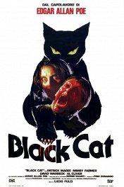Черный кот / Il gatto nero