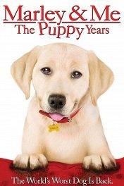 Марли и я-2 / Marley & Me: The Puppy Years
