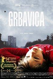 Грбавица / Grbavica