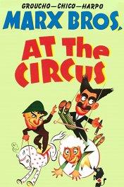 В цирке / At the Circus