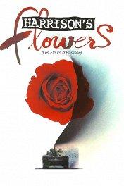 Спасти Харрисона / Harrison's Flowers