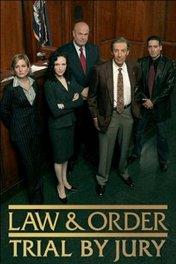 Закон и порядок: Суд присяжных / Law & Order: Trial by Jury