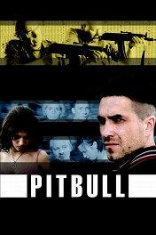 Питбуль / Pitbull