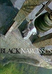 Постер Черный нарцисс