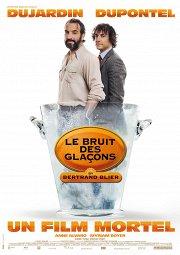 Постер Кусочки льда