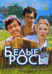 Постер Белые Росы