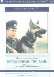 Постер Пограничный пес Алый