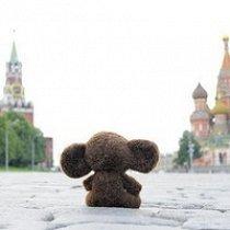 Фото Алексей Горюнов