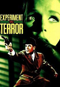 Эксперимент с ужасом
