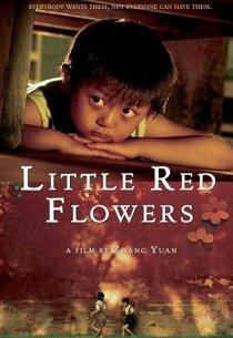 Маленькие красные цветочки
