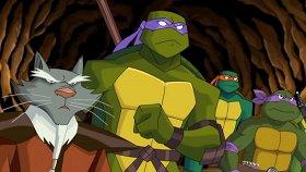 5 мультфильмов, на которых выросло не одно поколение
