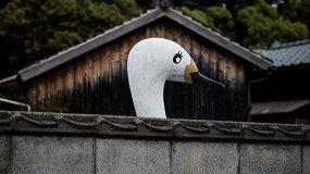 Координаты — Япония. Пространство значений