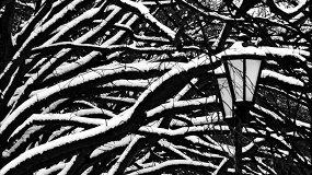 Снег I Nix I Snow