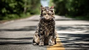 Лучшая адаптацияКинга истрашный кот: критики оновом «Кладбище домашних животных»