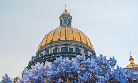 Куда сходить с детьми в Петербурге? 9 мест и событий, которые стоит посетить, если вы собираетесь в город на Неве