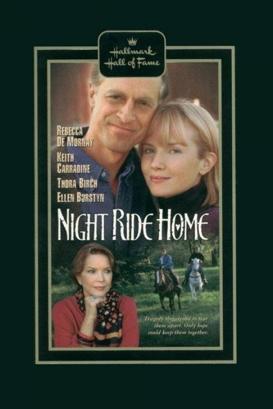 Долгая дорога домой (Night Ride Home)