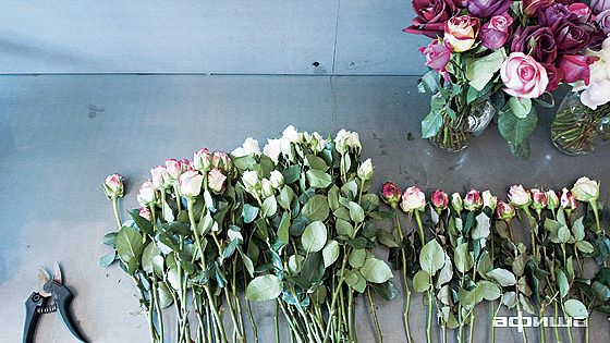 Во имя розы магазин цветов адреса