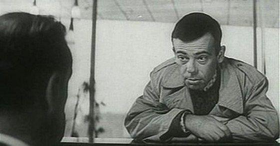 Лев Круглый