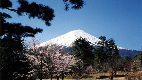 Маюми Морияма (Япония)