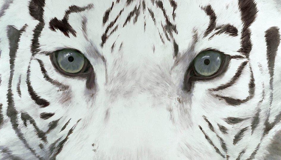 Выставки: Белый тигр Запада идет на Восток. Живопись Сергея Кужавского