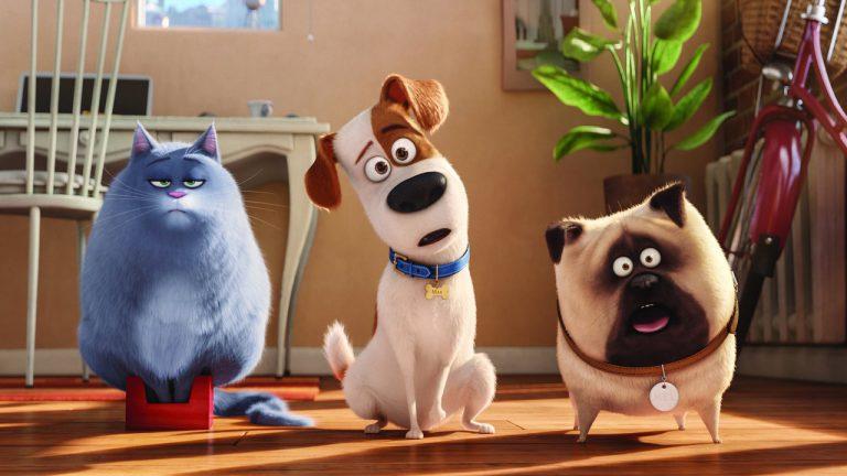 Pets - Trailer- Filmseite - Jetzt auf Blu-ray, DVD und