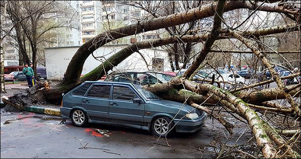 ПоМоскве иобласти прошелся ураган