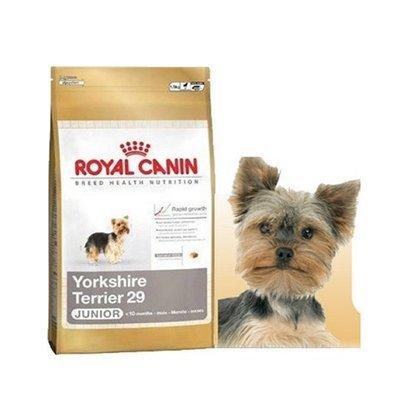 Корм royal canin в белгороде