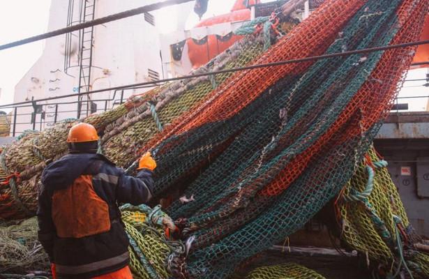 РРПК закончила 2020 годсрекордным объемом добычи ипроизводства рыбной продукции