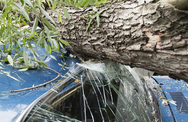 Вгрузинском Кобулети ураган снес крыши сдомов